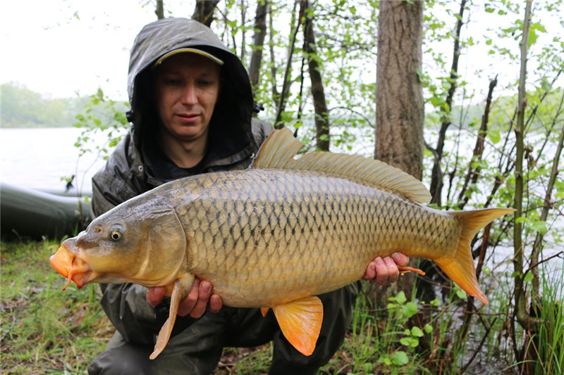 euro-carpfishing